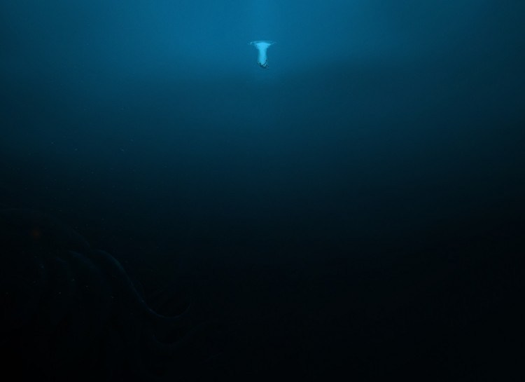 http://bcfun.ru океан