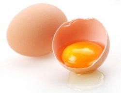 правда о яйцах