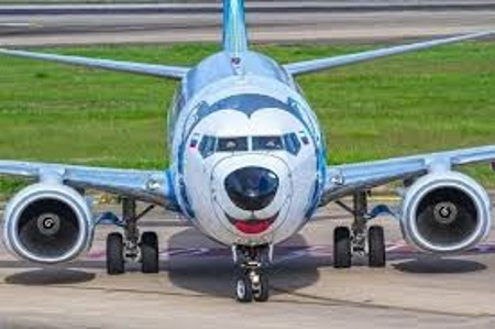 Талисман Лайка. Фото самолета в китайских соцсетях