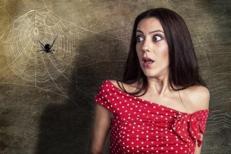 арахнофобия: боязнь пауков