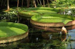 экзотические места отдыха